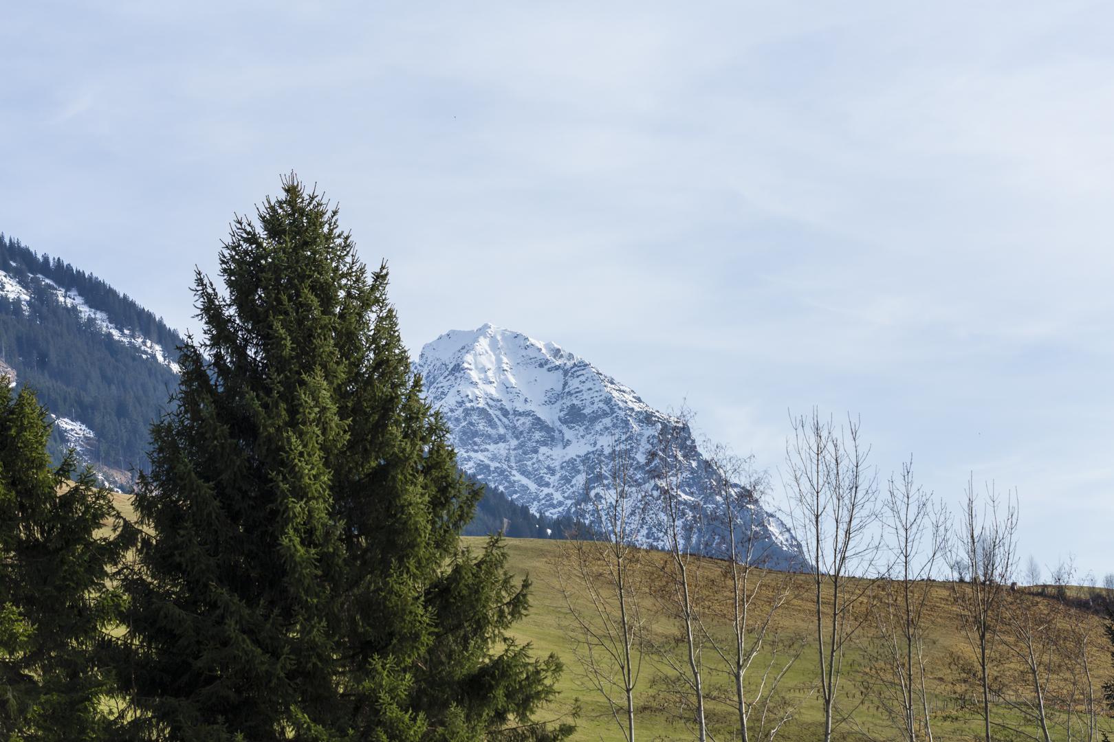 grüne wiese berge und blauer himmel