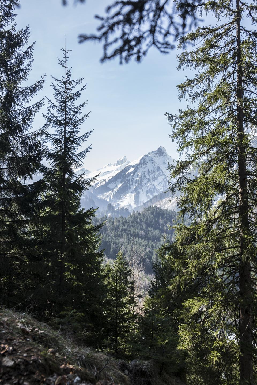 travel view mountains