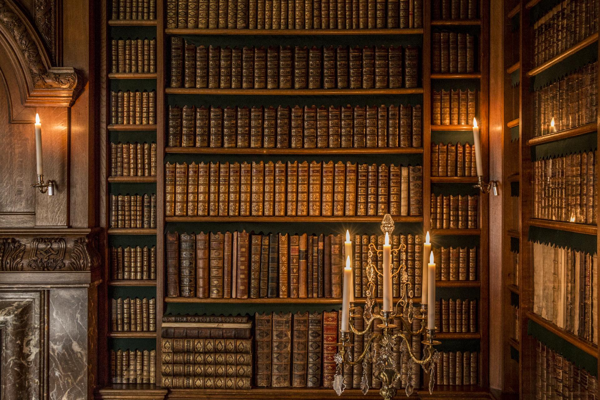 schloss bibliothek