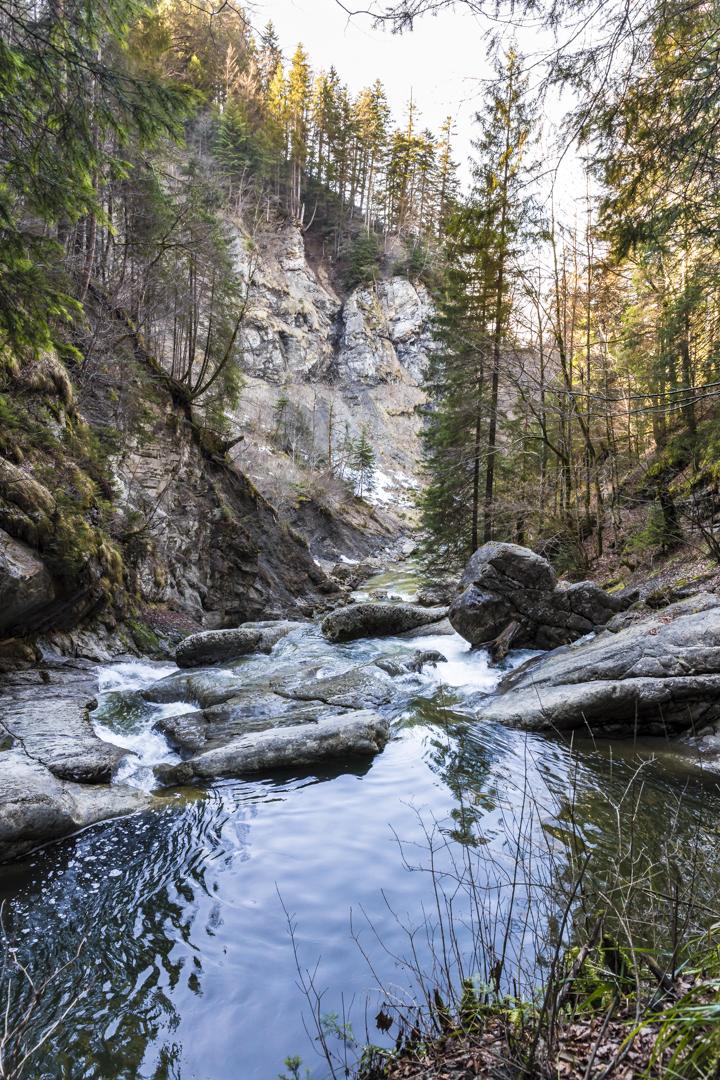 natur bayern