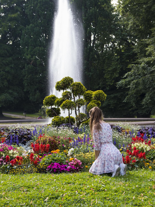 Blumen in Aachen